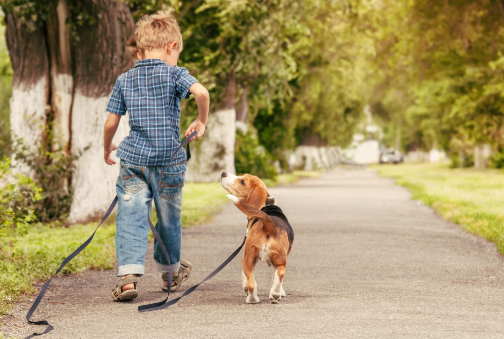 Leash training, like any other kind of dog training, benefits both you and your dog